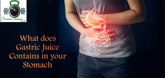 Gastric juice contains