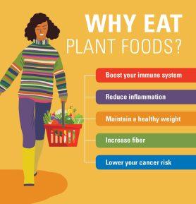 Vegan Diet health benefits